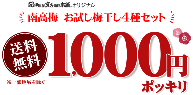 お試し梅1000円ポッキリ