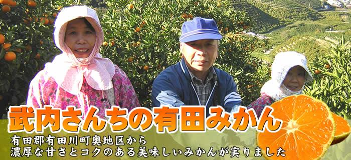 武内さんちの有田みかん